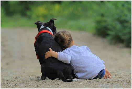 el niño y su mascota del alma